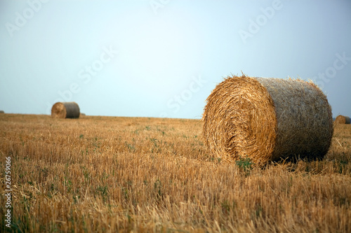 Stacks of straw