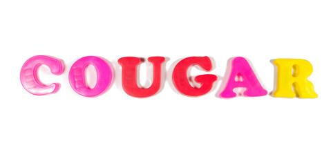cougar written in fridge magnets