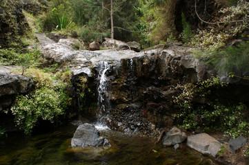 Cascade du Bras Rouge - Cilaos