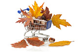 Shopping cart full of chestnuts and autumn maple leaves