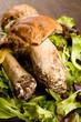 Funghi porcini su Tavola di legno