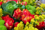 Various flowers - beautiful bouquet of colorful blooms.