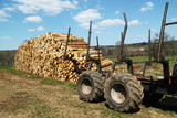 Logging Industry Sustainable Resources poster