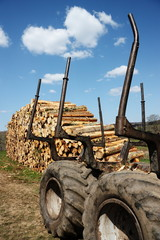 Sustainable Resources Timber Industry