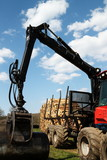 Timber Truck  and Logpile Renewable Resources