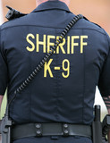 Sheriff K-9 Unit