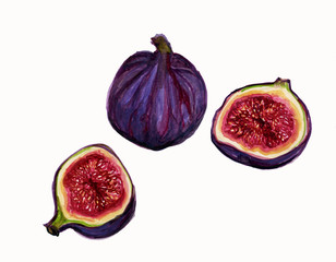 Illustration Ripe Figs Showing pulp and Seeds.