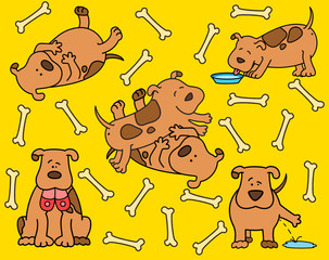 Vector illustration of cartoon dogs are pampered