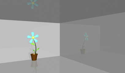 Flower in a room