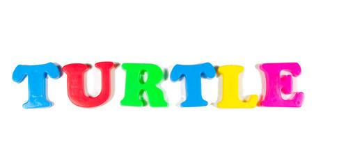 turtle written in fridge magnets
