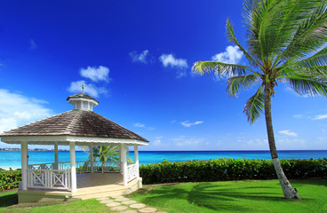 gazebo and palm tree