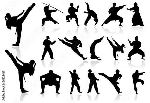 Arts martiaux fichier vectoriel libre de droits sur la for Art martiaux