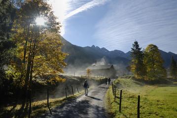 Morgennebel in Einödsbach bei Oberstdorf im Allgäu