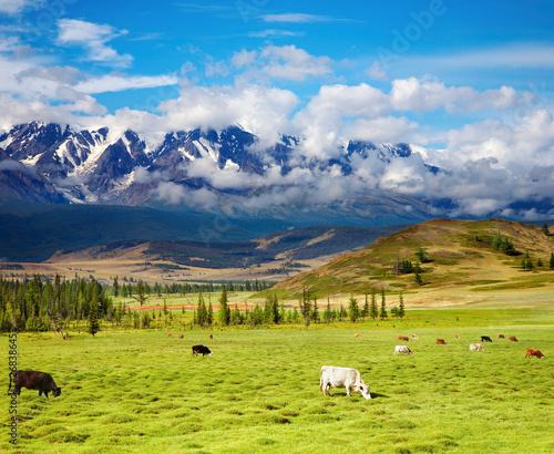Keuken foto achterwand Nieuw Zeeland Mountain landscape