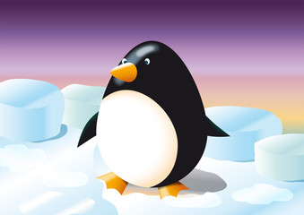 pinguino ovale sulla banchisa