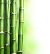 Fototapeten,bambus,frohes,glück,spa