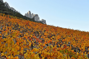 Paysage d' automne