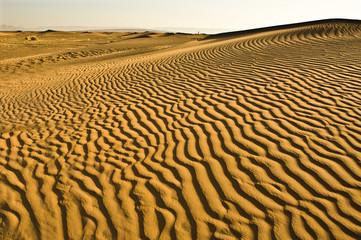 Dunas del Sáhara 4