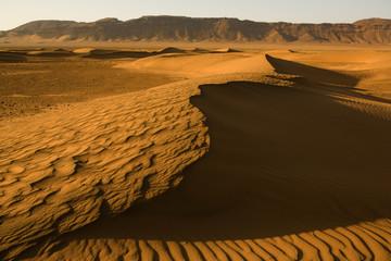 Dunas del Sáhara 5