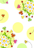 Flowers and butterflies, ladybugs colors