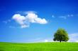 Leinwanddruck Bild - Green planet - Earth