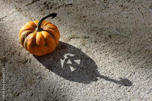 L'Ombre d'Halloween - Faisceau lumière