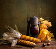 Herbstliches Stilleben mit Petroleumlampe und Maiskolben