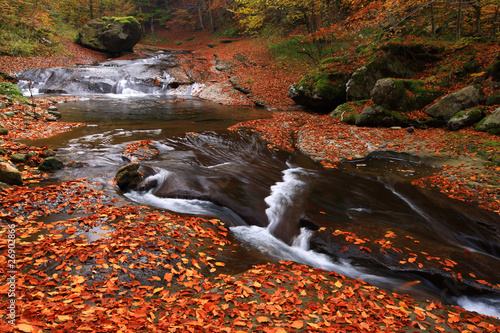 red leaf in oktober and river falls