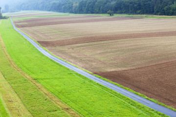 road between two agriculture lands