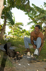native man feeding chickens coconut