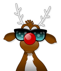 Rudolph in sun glasses
