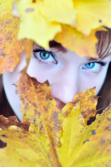 autumn eyes