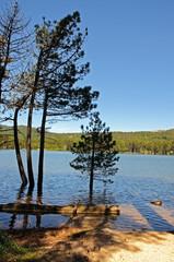 Lac de l'Ospédale en Corse