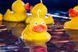 Fairground ducks - 26932811