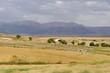 Paysage de campagne, Andalousie, Espagne
