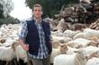Shepherd standing by sheep in meadow
