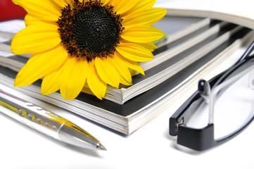 Magazine mit Sonnenblume