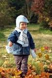 I am walking trough the autumn - Fine Art prints