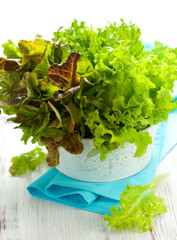 Mixed lettuce in a bowl