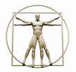 Body  in vitruvian