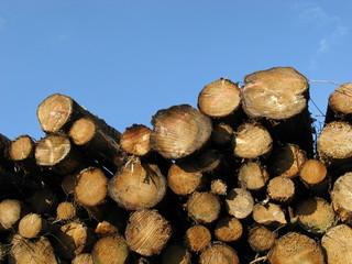 Holzstapel und Himmel