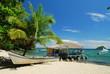 Fototapeten,kolumbien,panama,stranden,kokospalme