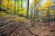 fall mountain - 26992448