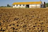 Terreno agricolo poster