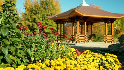 wooden gazebo in park