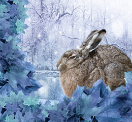 hare in winter nature