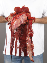 Man Holding Organs. Model Released