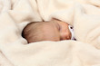 Cute newborn baby sleeping in soft blanket