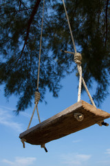 Swing of wood planks