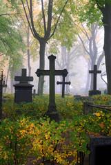 cemetary in fog in autumn